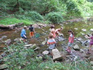 Stream Ecology Program at Lake Roland